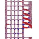 TJ.estructura