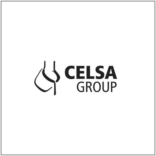 logo Celsa group